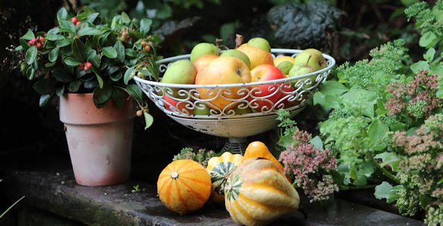 Apfelschale und Kürbis im Herbstgarten