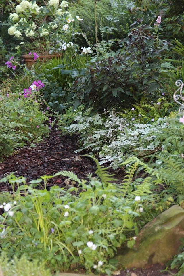 Staudenbeet Garten Herbst