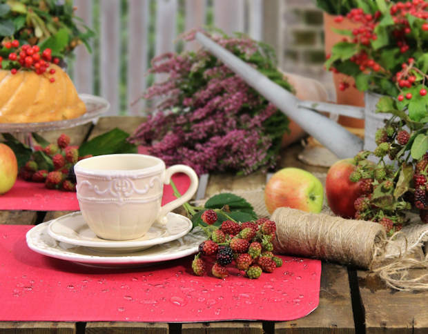 rote Tischsets abwaschbar