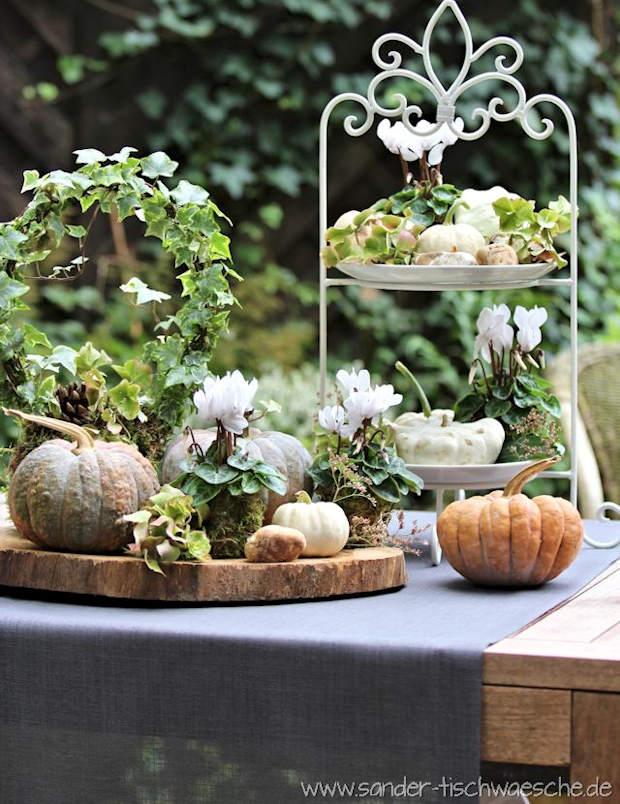 Tischdeko Herbst mit Kürbis und Alpenveilchen