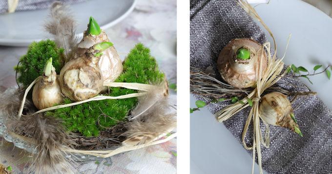 Tischdekorationen DIY mit Blumenzwiebeln